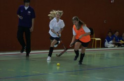 LE HOCKEY REPREND DE PLUS BELLE - IBS of Provence