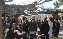 OPEN HOUSE AT IBS - IBS of Provence