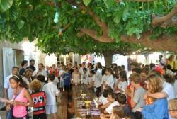 News - IBS of Provence - Press
